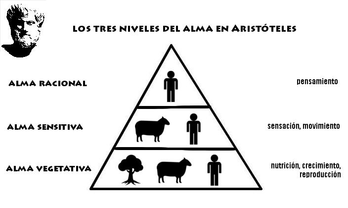 alma-en-aristc3b3teles