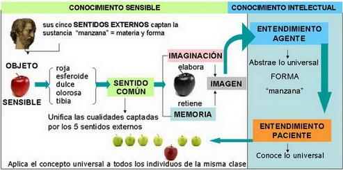 conocimiento-aristc3b3teles